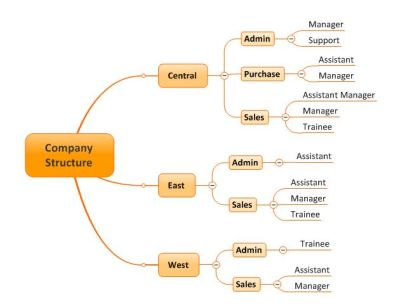 company structure map